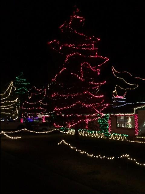 Winter Haven lights
